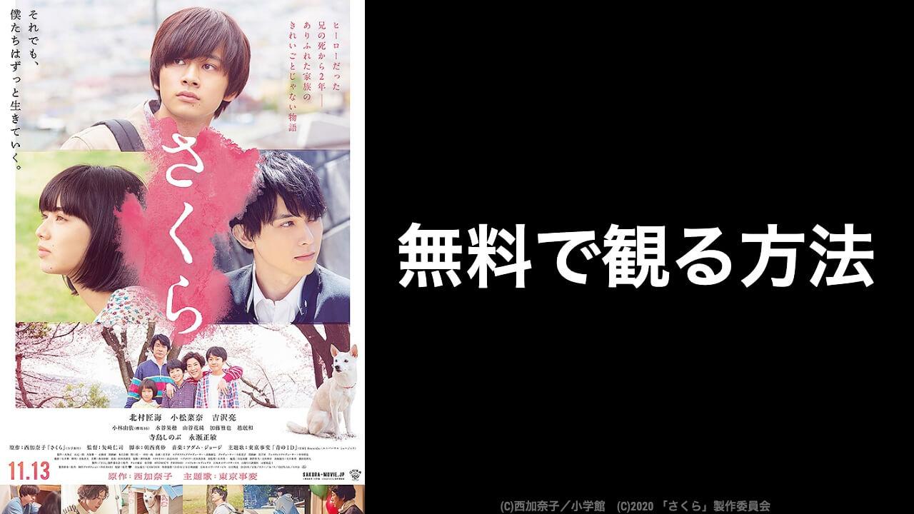 【おすすめ】映画『さくら』を無料視聴できる動画配信サービス