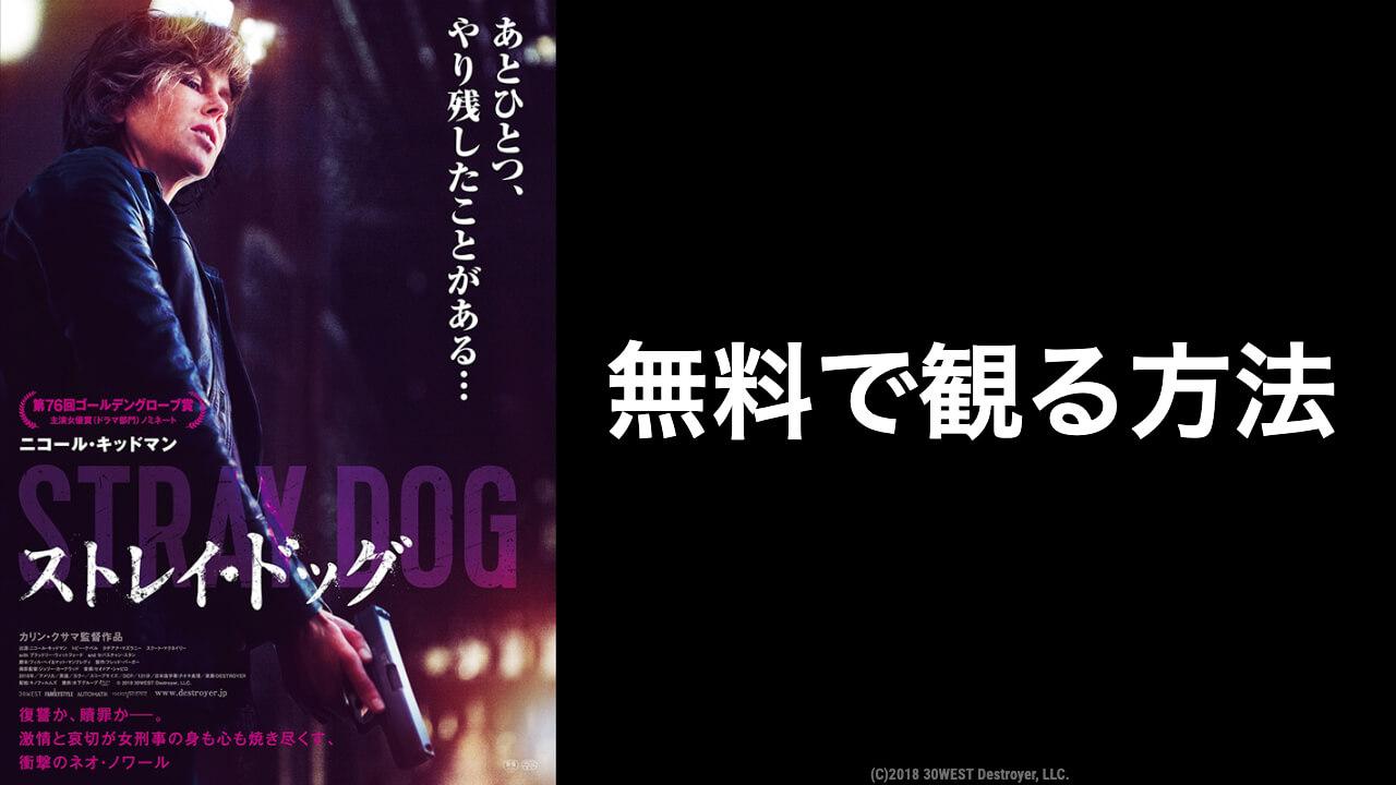 映画『ストレイ・ドッグ』の無料動画をフル視聴できるおすすめ配信サービス
